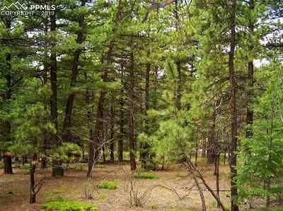 Woodland Park Residential Lots & Land For Sale: 1475 Kings Crown Road