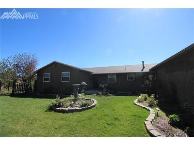 Colorado Springs Single Family Home For Sale: 7210 Pine Cone Road