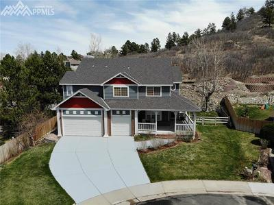 Castle Rock Single Family Home For Sale: 1394 Whitetail Drive