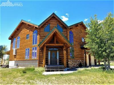 Colorado City Single Family Home For Sale: 4634 Santa Fe Drive