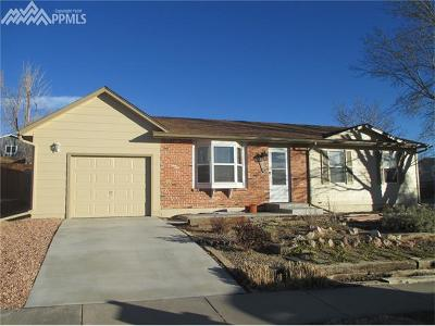 Colorado Springs Single Family Home For Sale: 6890 Parkridge Court