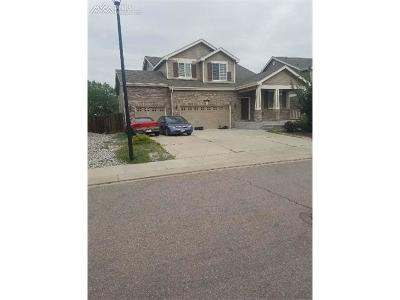 Single Family Home For Sale: 470 Winebrook Way