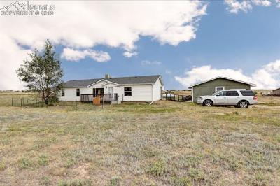 Peyton Single Family Home For Sale: 10365 Horseback Trail