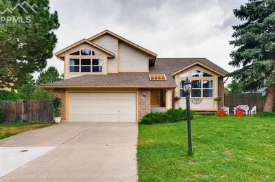 Single Family Home Under Contract - Showing: 7780 Conifer Drive