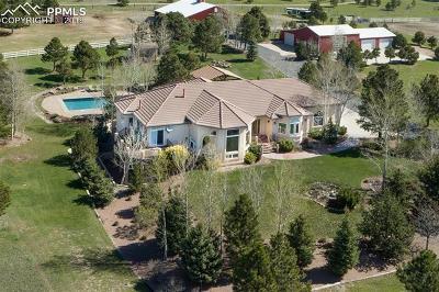 Single Family Home For Sale: 3131 E Palmer Divide Avenue