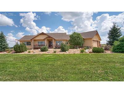Single Family Home For Sale: 17265 Papago Way