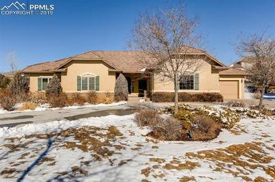 Pine Creek Single Family Home For Sale: 9741 Pinnacle Knoll Court
