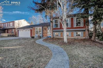 Single Family Home Under Contract - Showing: 4866 S Old Brook Circle