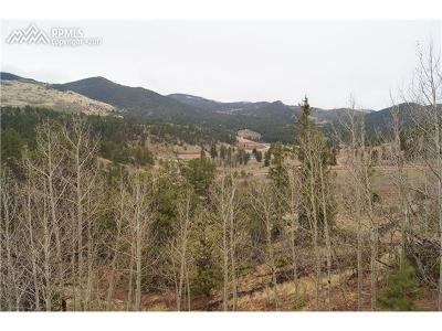 Cripple Creek Residential Lots & Land For Sale: 240 Molly Kathleen Drive