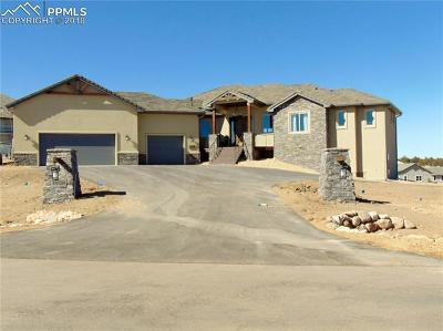 El Paso County Single Family Home For Sale: 4512 Settlers Ranch Road