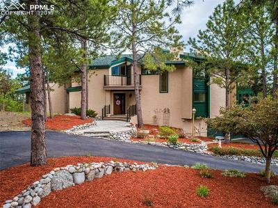 Single Family Home For Sale: 19439 Rim Of The World Drive
