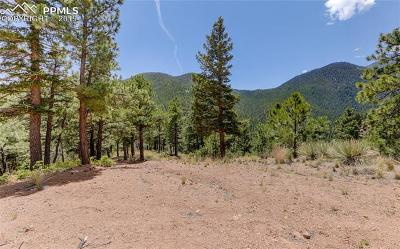 Residential Lots & Land For Sale: 5565 Founders Place