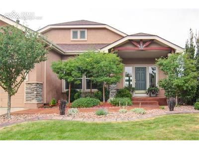 Colorado Springs Single Family Home For Sale: 3376 Silver Pine Trail