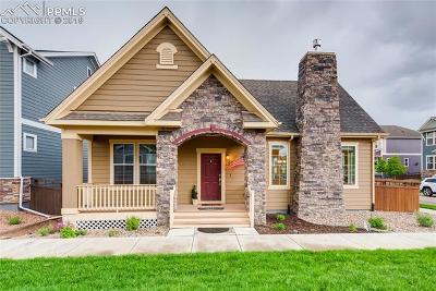 Colorado Springs Single Family Home For Sale: 105 Mayflower Street