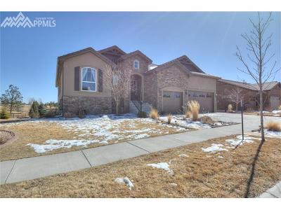 Colorado Springs Single Family Home For Sale: 1167 Old North Gate Road