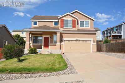Colorado Springs Single Family Home For Sale: 6472 Alibi Circle