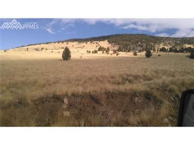 Cripple Creek Residential Lots & Land For Sale: Oooo Monarch Drive