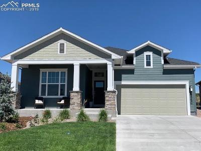 Colorado Springs Single Family Home For Sale: 10042 Prima Run Place