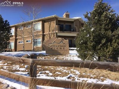 Condo/Townhouse Under Contract - Showing: 2085 Montura View #102