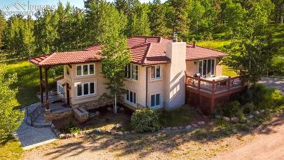 Woodland Park Single Family Home For Sale: 1313 Rampart Range Road