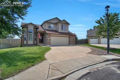 Colorado Springs Single Family Home For Sale: 790 Amberglen Court