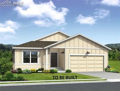 Colorado Springs Single Family Home For Sale: 6938 Cumbre Vista Way