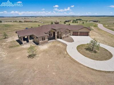 El Paso County Single Family Home Under Contract - Showing: 4958 Silver Nell Drive