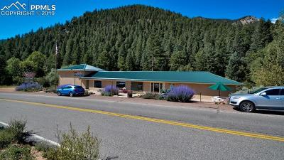 Commercial For Sale: 8025 W Highway 24 Highway