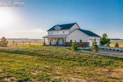 Calhan Single Family Home For Sale: 24076 Kobilan Road