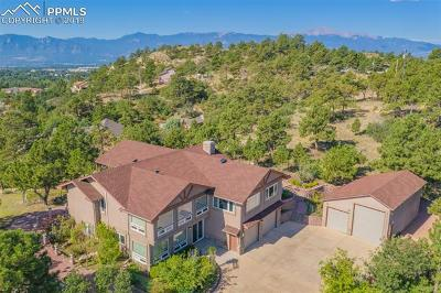 Colorado Springs Single Family Home For Sale: 2008 Payton Circle