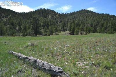 Guffey Residential Lots & Land For Sale: Vista View Road