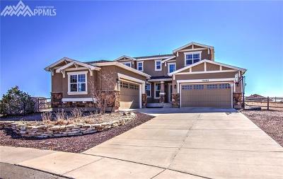 Peyton Single Family Home For Sale: 12285 Ozark Place