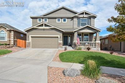 Colorado Springs Single Family Home For Sale: 6551 Sawbuck Road