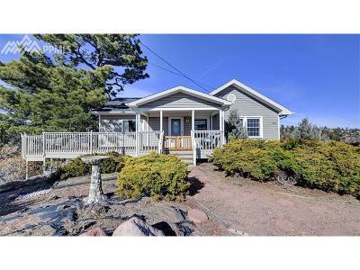 Colorado Springs Single Family Home For Sale: 29 Cragmor Village Road
