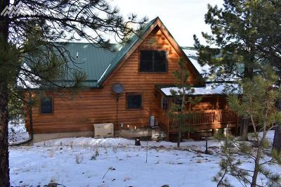 Single Family Home For Sale: 481 Coyote Trail