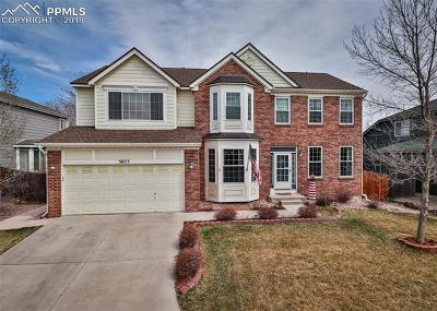 Springs Ranch Single Family Home For Sale: 3673 Pony Tracks Drive