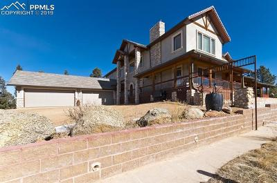 Single Family Home For Sale: 4687a W Highway 24 Highway