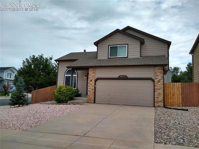 Colorado Springs Single Family Home For Sale: 6973 Cloud Dancer Drive