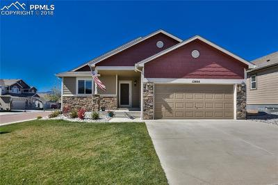 Colorado Springs Single Family Home For Sale: 12404 Fish Pond Point