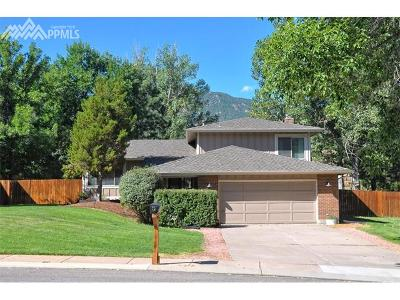 Colorado Springs Single Family Home For Sale: 3880 Becket Drive