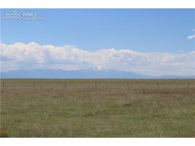 El Paso County Residential Lots & Land For Sale: 462 N Dinner Bell Drive