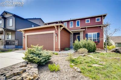 Colorado Springs Single Family Home For Sale: 5829 Rowdy Drive