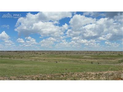 El Paso County Residential Lots & Land For Sale: 17170 Vigilante View