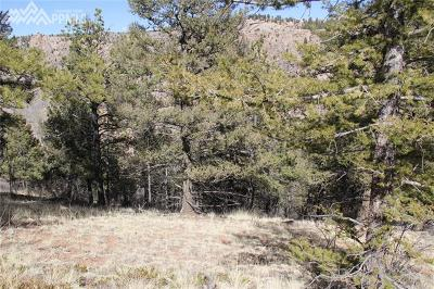 Cripple Creek Residential Lots & Land For Sale: 1101 Dandy Jim Drive
