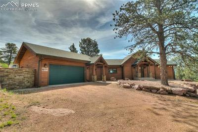 Florissant Single Family Home For Sale: 876 Old Ranch Road