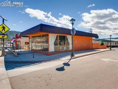 Woodland Park Commercial For Sale: 121 W Midland Avenue
