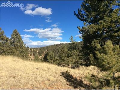 Cripple Creek Residential Lots & Land For Sale: 129 Isabella Circle