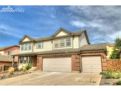 Colorado Springs Single Family Home For Sale: 8410 Drayton Hall Drive