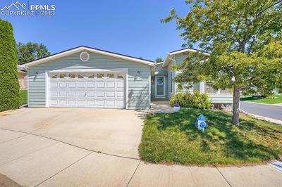 Colorado Springs Single Family Home For Sale: 4602 Gray Fox Heights