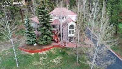 Woodland Park Single Family Home For Sale: 1000 Sun Valley Drive